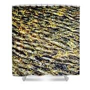 Golden Water On Mountain Lake Shower Curtain