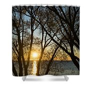 Golden Willow Sunrise - Greeting A Bright Day On The Lake Shower Curtain