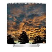 Golden Winter Morning Shower Curtain by Jason Coward