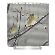 Golden With Snow Shower Curtain