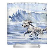 Goldendoodle At The Beach Shower Curtain