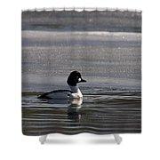 Goldeneye 4 Shower Curtain