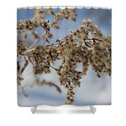Goldenrod In The Snow Shower Curtain