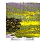 Goldenrod Oak Santa Ynez California 2 Shower Curtain