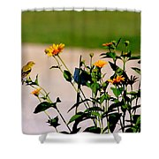 Goldfinch And Yellow Flowers Shower Curtain