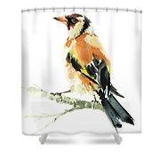 Goldfinch Bird  Shower Curtain