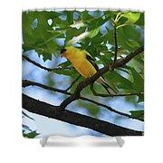 Goldfinch In Oak Tree Shower Curtain