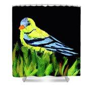 Goldfinch In The Garden Shower Curtain