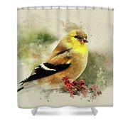 Goldfinch Watercolor Art Shower Curtain