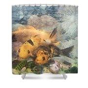 Goldfish In An Aquarium Shower Curtain