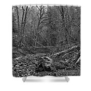 Goldstream Provincial Park Black And White Shower Curtain