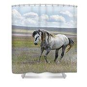 Goliath Shower Curtain