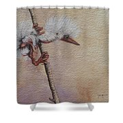 Gollum The Heron Chick Shower Curtain
