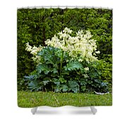 Gone To Flower Shower Curtain