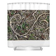 Good Hearts Are Everywhere - Grounded Shower Curtain