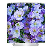 Good Morning Blossoms Shower Curtain