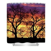 Good Morning Cows Colorful Sunrise Shower Curtain