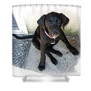 Good Puppy Shower Curtain