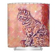 Good Tabby Shower Curtain