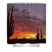 Goodnight Tucson Shower Curtain