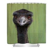 Goofing Around Emu Shower Curtain
