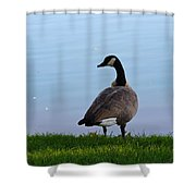 Goose #2 Pose Shower Curtain