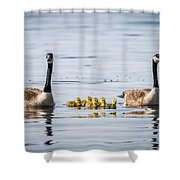 Goose Family Shower Curtain