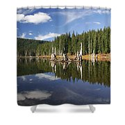 Goose Lake Shower Curtain