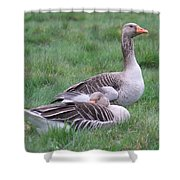 Goose Lookout Shower Curtain