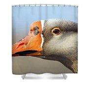 Goose Portrait Shower Curtain