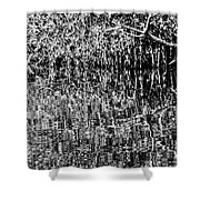 Gordon River Reflections Two 2 Shower Curtain