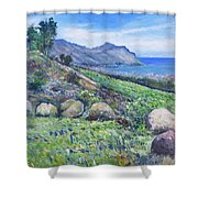 Gordon's Bay Cape Town South Africa Shower Curtain