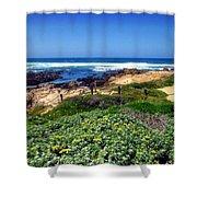 Gorgeous Asilomar Shower Curtain
