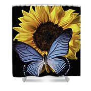 Gorgeous Blue Butterfly Shower Curtain
