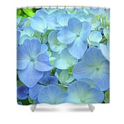 Gorgeous Blue Colorful Floral Art Hydrangea Flowers Baslee Troutman Shower Curtain
