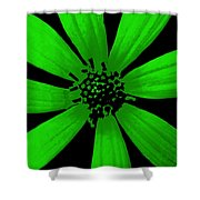 Gorgeous Green Shower Curtain