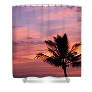 Gorgeous Hawaiian Sunset - 1 Shower Curtain