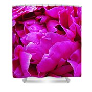 Gorgeous Pink Shower Curtain
