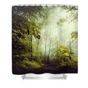 Gorgeous Woods Shower Curtain
