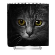 Gorgeous Yellow-green Eyes Cat Shower Curtain