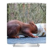 Gorging Squirrel Shower Curtain
