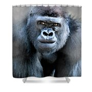 Gorilla In The Mist Wall Art Shower Curtain by David Millenheft