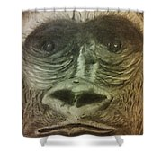 Gorilla In The Zoo Shower Curtain