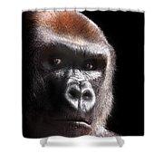 Gorilla ... Kouillou Shower Curtain