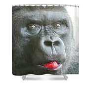Gorilla Loves Jello Shower Curtain
