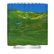 Gorman Wildflowers Shower Curtain
