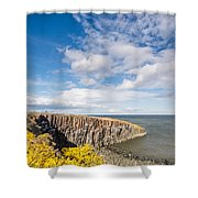 Gorse At Cullernose Point Shower Curtain