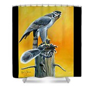 Goshawk Shower Curtain