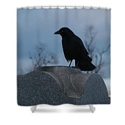 Gothic Blue Sky And Crow Shower Curtain