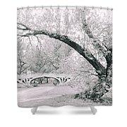 Gothic Bridge 28 Shower Curtain